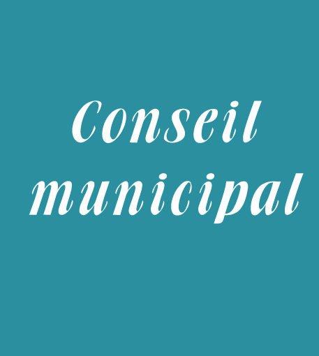Actu conseil municipal intro